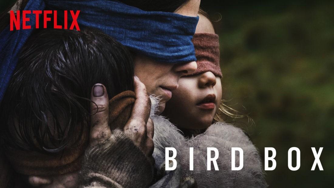 Capa Bird Box