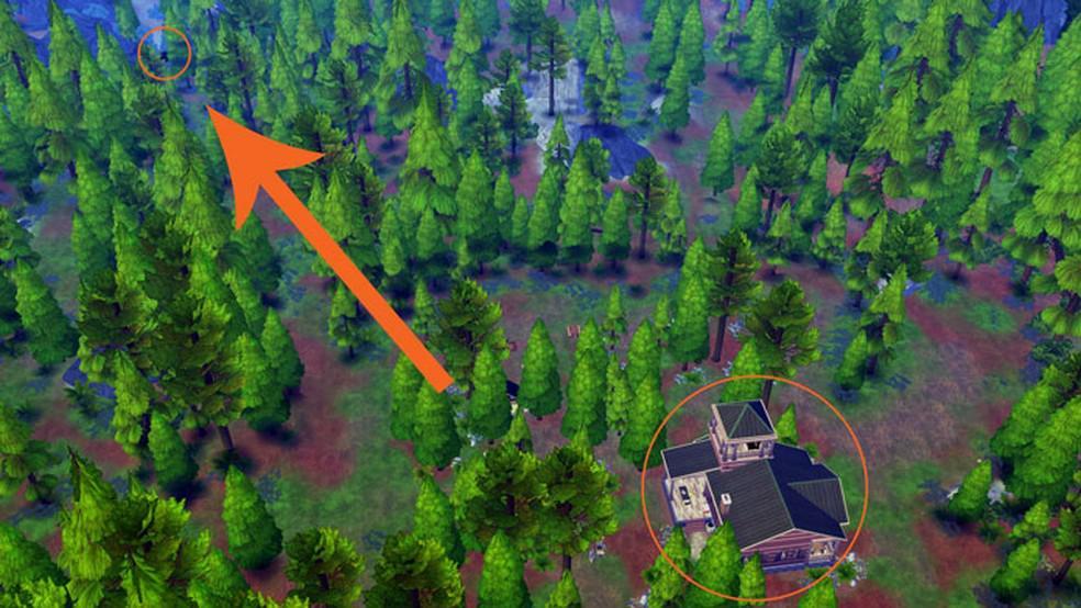 Como entrar no Bosque Denso